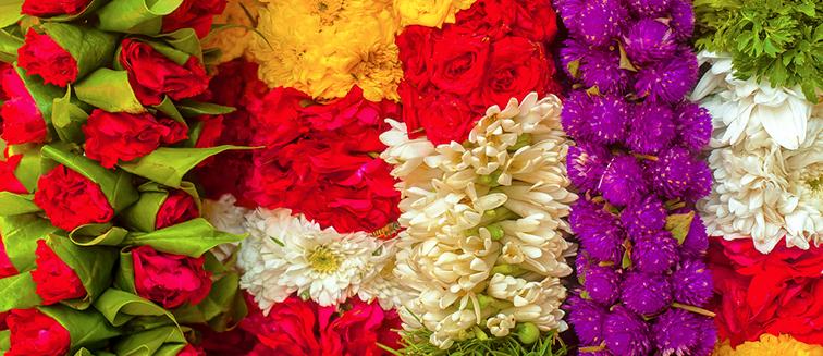 Chiang Mai Flower Carnival